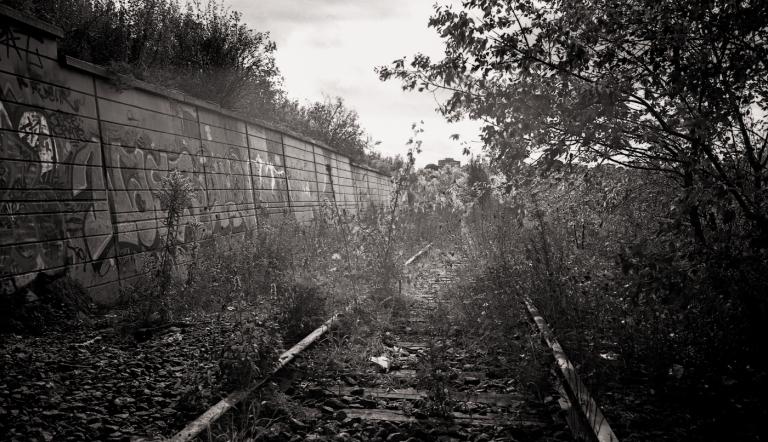 Canon P 80s020-Edit