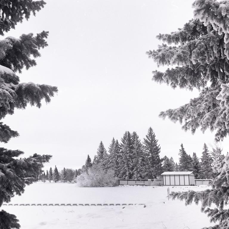 Banff and LB Jan 2015079