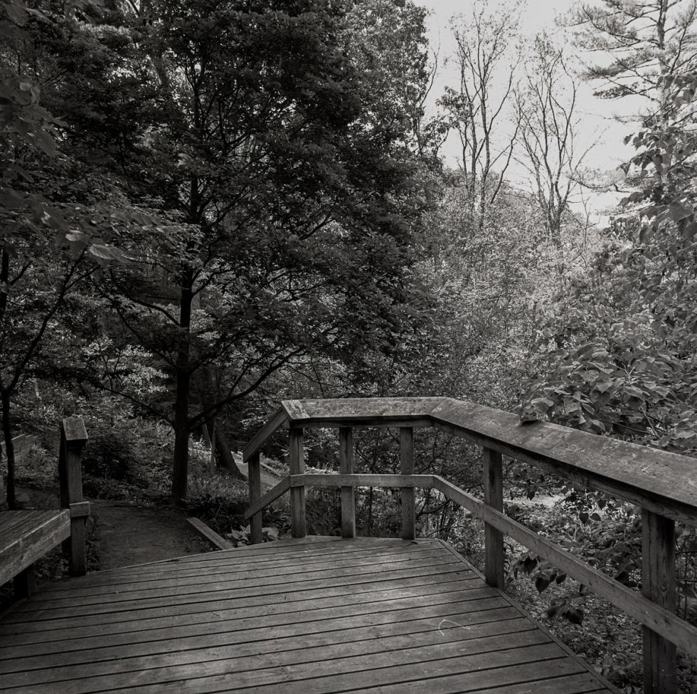 Royal Botanical Gardens012