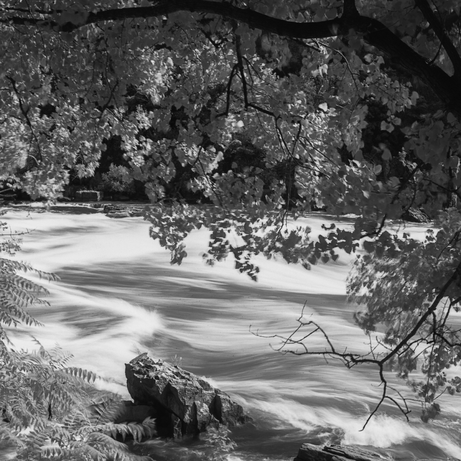 White Water walk004