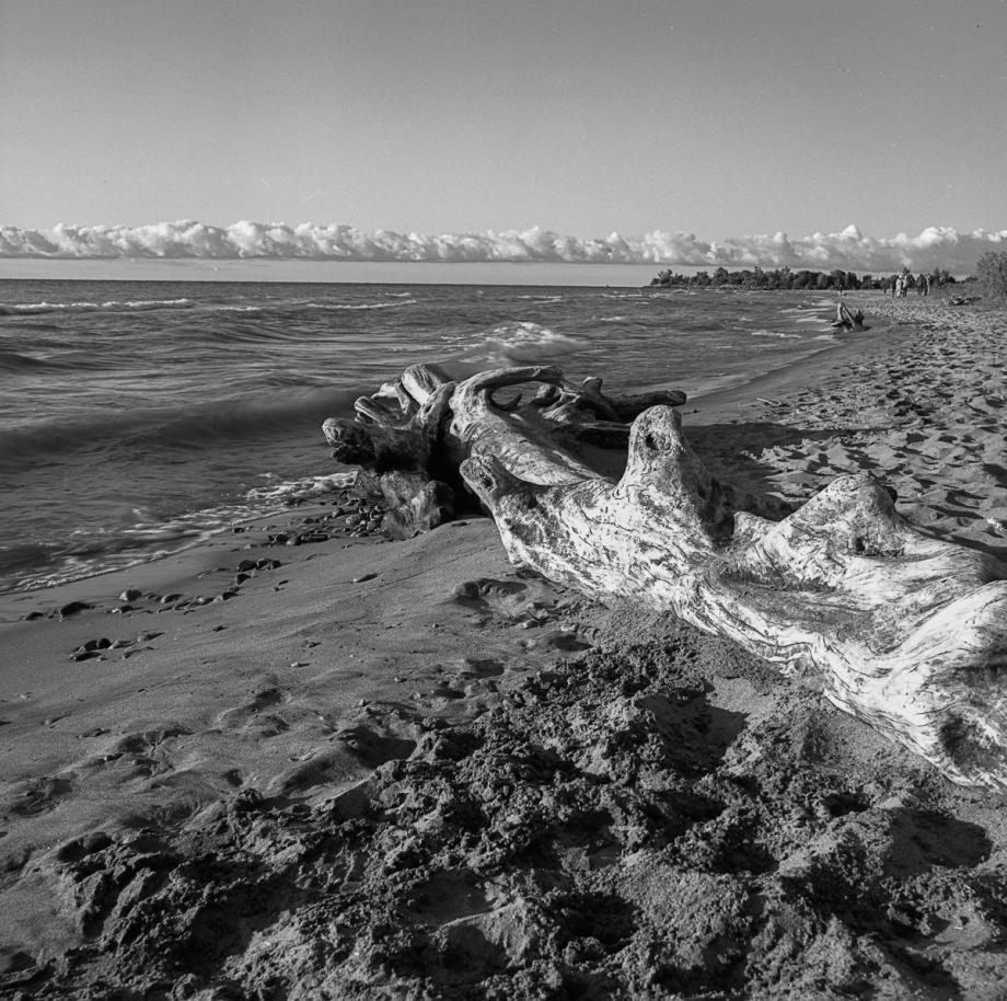 Bluffers Beach HB RPX25011