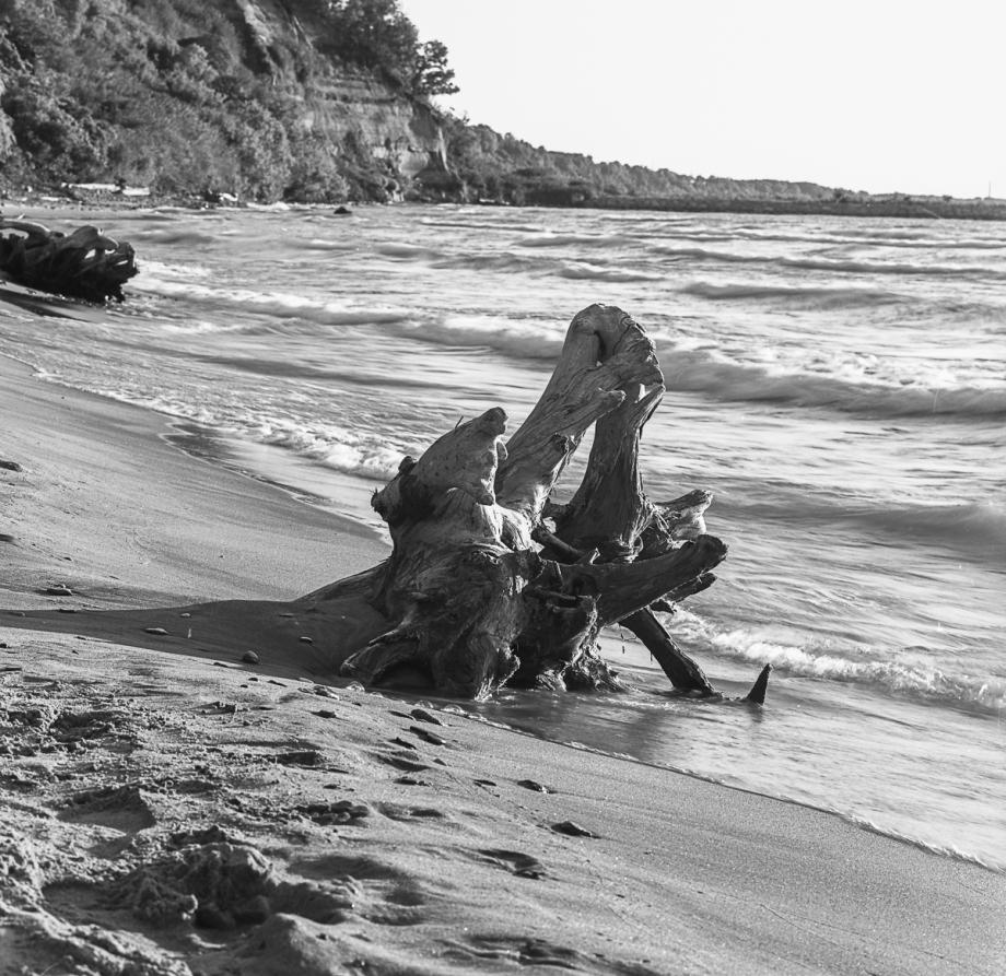 Bluffers Beach HB RPX25012