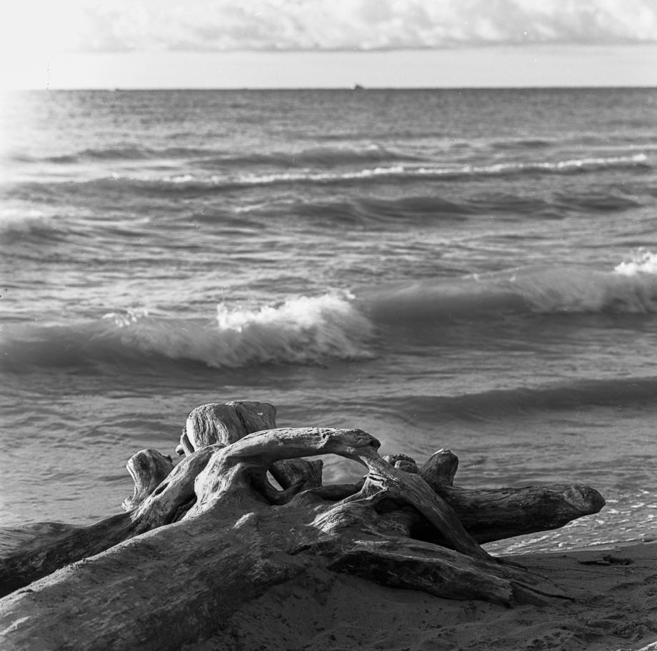 Bluffers Beach HB RPX25015