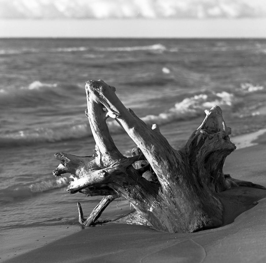 Bluffers Beach HB RPX25017