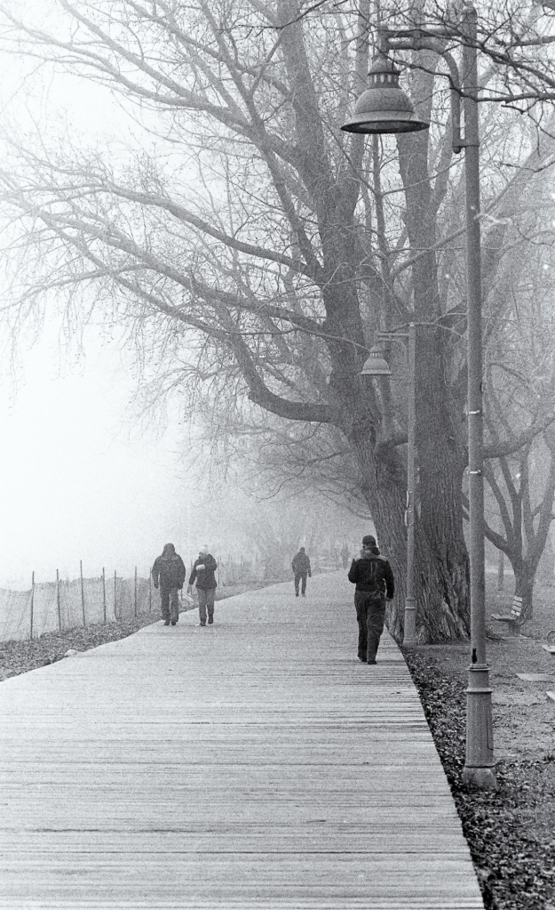 beaches-fog-n90s-ulfx016-edit